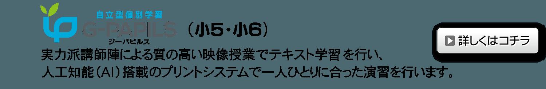 自立型AI個別クラス「Gパピルス」